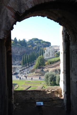 rome italy coliseum senate