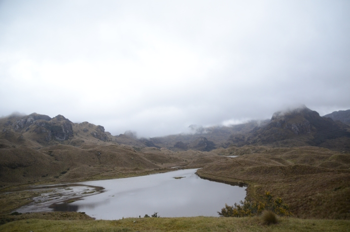 One of over 700 lakes in Cajas National Park