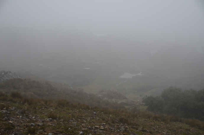 The foggy, misty view from the Tres Cruces outlook site.  And it was cold, too.