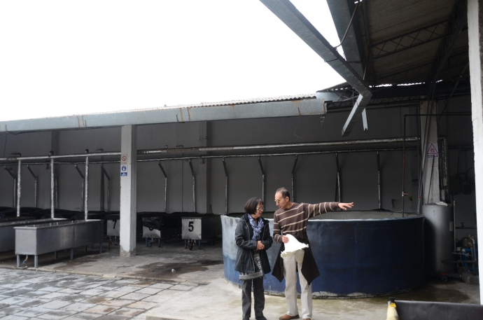 Rain water is collected in the large tank and reused in the dyeing process