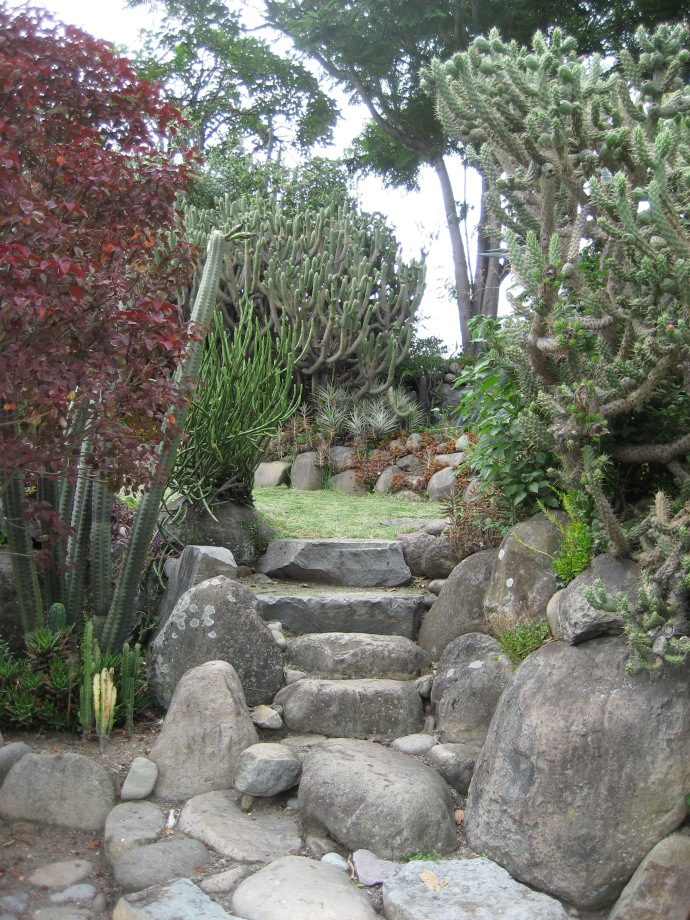 A stone stairway in the gardens at Pumapungo