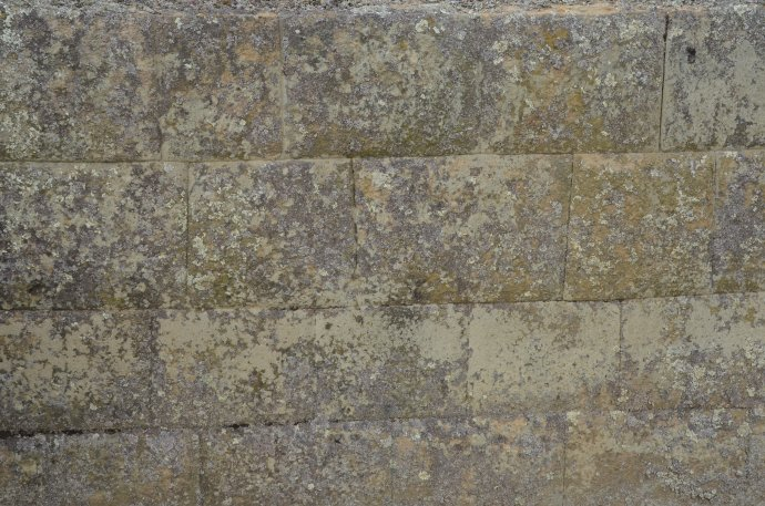 Close-up of stone masonry at Ingapirca