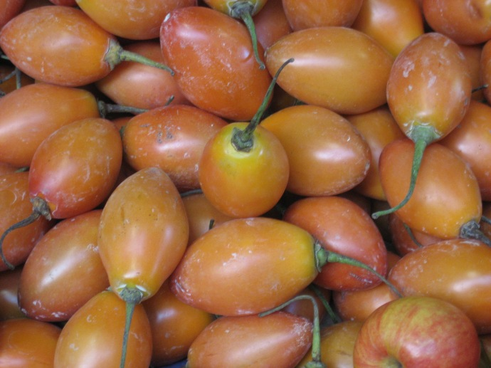 Tomato de arbor or tree tomatoes, in the unwashed state