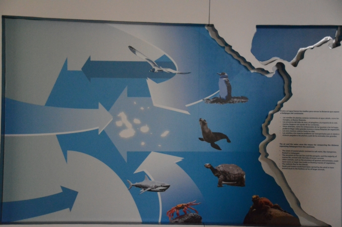 A sign explaining how the ocean and wind currents enabled animals to arrive on the islands.