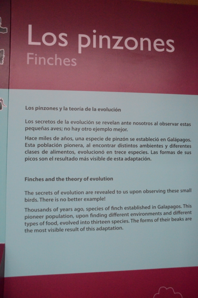 A sign at the Interpretive Center explaining finch adaptations on the Galapagos Islands