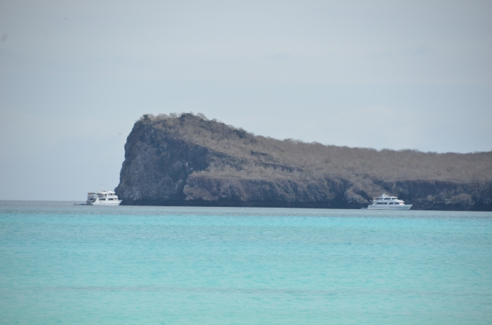 Ships follow snorkelers around this cliff.