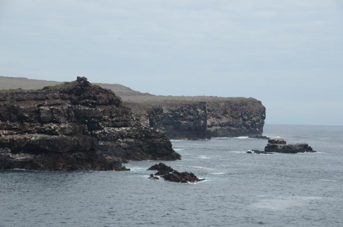 Suárez Point on Española Island