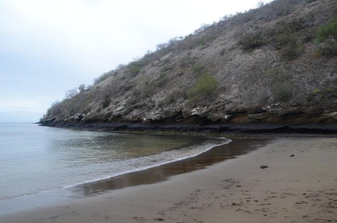 Greenish sand beach at Cormorant Point on Floreana Island