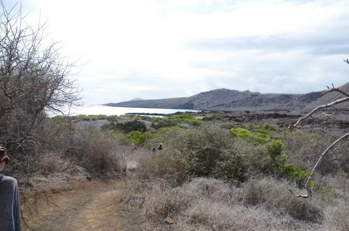 Path across Floreana Island to sea turtle bay