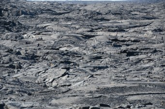 A view of the lava field containing a variety of Pahoehoe (also called rope) lava designs.