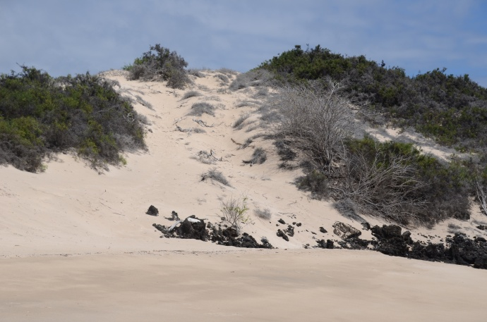 Sullivan's Beach, Santiago Island
